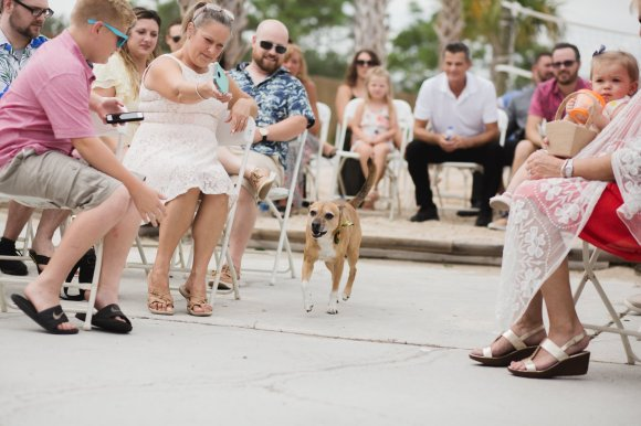 Brownell Beach Shore Wedding Gulf Shore Max